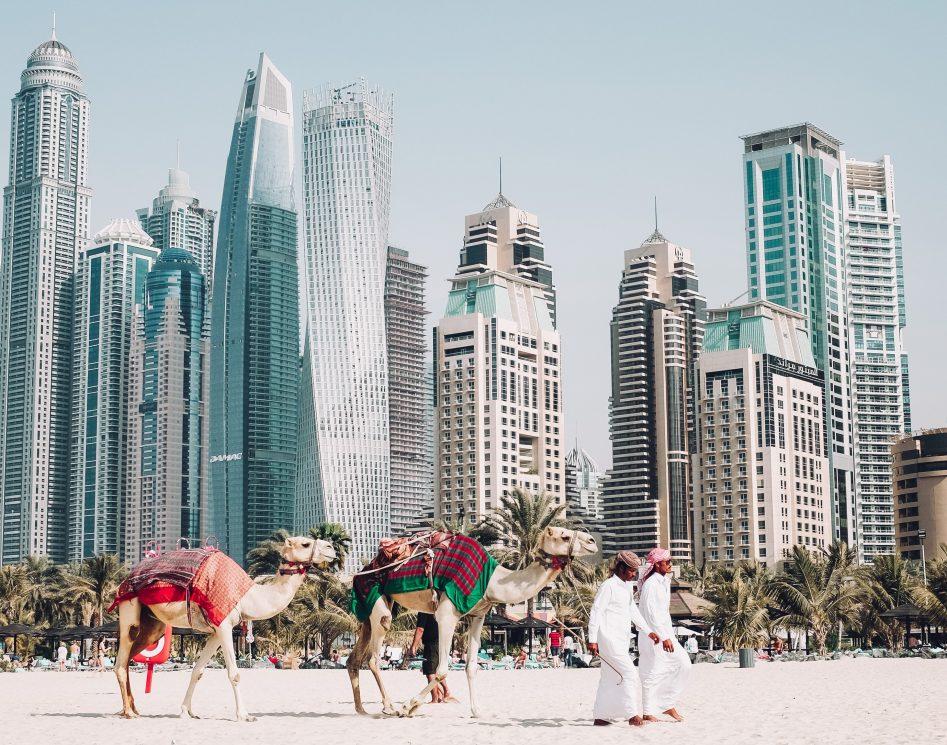 Nieuwsbrief - Dubai skyline kamelen